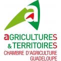CHAMBRE D AGRICULTURE  - CHAMBRE D'AGRICULTURE DE LA GUADELOUPE