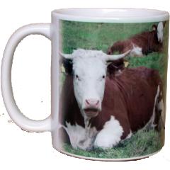 Mug with equestrian design
