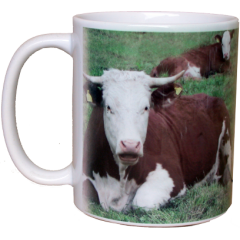 Mug with equestrian design