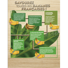 Banana Pointe d'or - Naturally created from two old types of bananas among hundreds. This banana is mainly adapted for the biological agriculture.