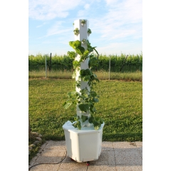 Bioponic vertical Aerospring garden - <p><strong>Grow your vegetables, salads and herbs</strong>. Become a gardener and involve the whole family.</p> <p>The <strong>Vertical and Bioponic Aerospring Garden</strong> is ideal for <strong>balconies</strong>, <strong>terraces</strong> and <strong>indoor</strong> sunny areas.</p> <p><strong>With 36 edible plants</strong>, this vertical garden makes it possible to have a real vegetable garden, without effort and without pain. vegetables harvested on the Aerospring are <strong>more nutritious</strong>, <strong>non-GMO</strong> and <strong>pesticide-free</strong> thanks to the use of bioponic fertilizers, both organic and bio-sourced.</p> <p><strong>Easy to install</strong> <strong>and maintain</strong>, gardening is simplified and requires no experience. At the same time modern and<strong> optimized</strong>, it is enough only <strong>1m2</strong>, a little sun and water before harvested its first vegetables.</p> <p>The Aerospring is also an <strong>economical solution</strong> with automatic watering in a re-circulating, closed system which consumes <strong>90% less water</strong> than a conventional garden.</p> <p></p> <p></p> <p></p>