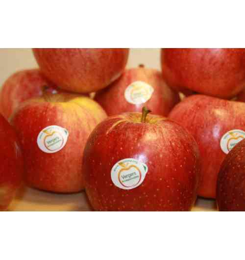 French Apples, pears, peaches, nectarines, apricots