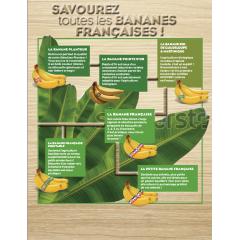 Banana Planteur - A pretty and qualitative banana with an intense color !