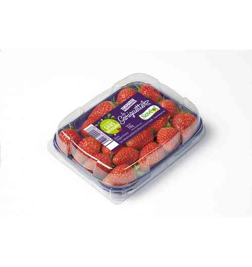 Pesticide-free Strawberry Gariguette 250g Extra - The Gariguette strawberry is renowned for its particularly fragrant, juicy and tangy flesh. This product is guaranteed without synthetic pesticide treatments from the flower to the plate.